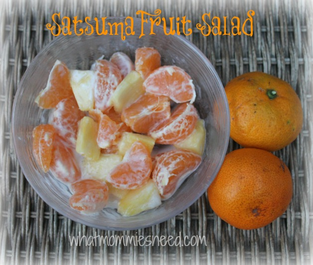 Satsuma Fruit Salad