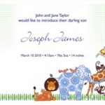 Beautiful Birth Announcements from Little One Prints