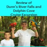 Dunn's River Falls and Dolphin Cove Excursion in Jamaica Review